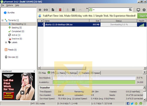 Download torrent status